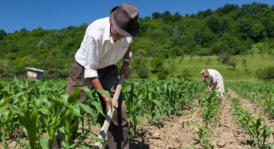 aposentadoria trabalhador rural